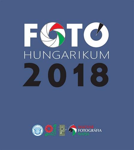 FH2018 borito